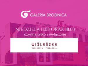 Godzinny otwarcia Galerii Brodnica
