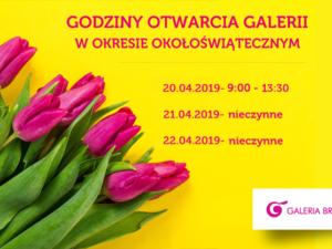 godziny otwarcia Galeria Brodnica